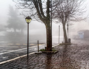 Streetlight Photos - Fog In The Country by Leonardo Marangi