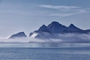 Daniel Sands - Fog in the Kenai