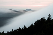 North Carolina Mountains Prints - Fog on the Mountain Print by Bill Swindaman