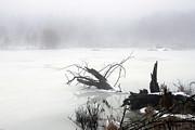 Fog On The Pond Print by David Simons