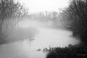 Diana Boyd - Fog over the Stream