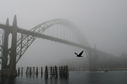 Wayne Lindberg - fogged Bridge