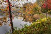 Autumn In New England Prints - Foggy Autumn Day Print by Bill  Wakeley