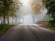 Kari Yearous - Foggy Autumn Drive