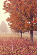 Road Photo Posters - Foggy Autumn Morning Etna New Hampshire Poster by Edward Fielding