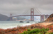 Kate Brown Metal Prints - Foggy Bridge Metal Print by Kate Brown