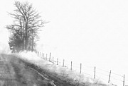 E Black Drawings Prints - Foggy Country Road Print by Rosemarie E Seppala