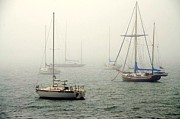 Diana Berkofsky - Foggy Day On A Sailboat