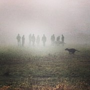 Miriam Kelly - #foggy #dogpark Morning