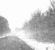 Poles Drawings - Foggy Eleven Mile Road Newaygo County Michigan by Rosemarie E Seppala
