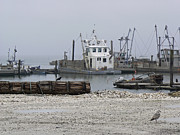 Enterprise Metal Prints - Foggy Harbor Metal Print by Pamela Patch