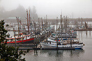 Panoramic Marina Framed Prints - Foggy Ilwaco Port Framed Print by Robert Bales