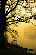 Abandoned Originals - Foggy lake in beams of a rising sun in the morning by Tommy Hammarsten