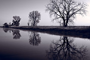 Wildlife Refuge Photo Prints - Foggy Morn BW Print by Steve Gadomski