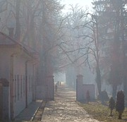 Ann Johndro-Collins - Foggy Morn Cetinje...