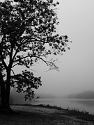 Megan Brandl - Foggy Morning at...