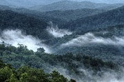 Gatlinburg Tennessee Posters - Foggy Morning Poster by Coby Cooper