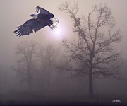 Eagles Digital Art - Foggy Morning Flight by Bill Stephens