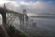 Element Photos - Foggy Morning in Newport by Sandra Bronstein