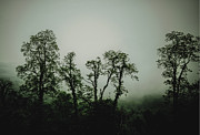 John Haldane Prints - Foggy Mountain Morning at the Meadows of Dan Print by John Haldane