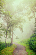 Abstract Art Prints Digital Art Prints - Foggy Path - Blue Ridge Parkway Print by Dan Carmichael