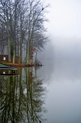 Sandi Oreilly Art - Foggy Reflection by Sandi OReilly