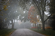 Asphalt Photos - Foggy street by Elena Elisseeva