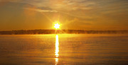Reflection Of Sun In Clouds Metal Prints - Foggy Sunrise Over Manhassett Bay Metal Print by John Telfer