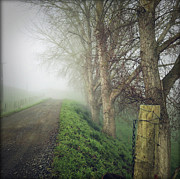 Autumn Scene Photos - Foggy trail by Les Cunliffe