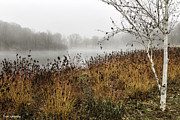 Dogwood Lake Prints - Foggy Vista at the Lake Print by Fran Gallogly