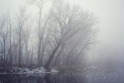 Dorinda Grever - Foggy Winter Morning