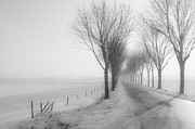 Foggy Street Scene Acrylic Prints - Foggy winter morning Acrylic Print by Ruud Morijn