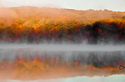 Changing Colors Prints - Foilage in the Fog Print by Anthony Sacco