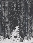 Snowy Trees Drawings - Foliage Spillage  by Audrey Bautz