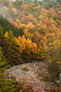 Jeff Folger - Foliage views near...