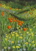 Poppies Field Pastels - Follow Me by Laurie Morgan