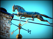 Weathervane Prints - Follow the Horse 2 Print by Kathy Barney