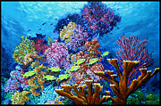 Underwater Ocean Scene Framed Prints - Following The Leader Framed Print by John Lautermilch