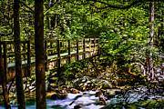 Barry Jones - Following the Trail