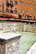 Siena Prints - Fonte Gaia Siena Print by Mathew Lodge