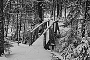 Bar Harbor Acrylic Prints - Foot Bridge in Winter Acrylic Print by David Rucker