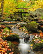 Fall Photos Photo Framed Prints - Foot Bridge- Macedonia Brook State Park Framed Print by Thomas Schoeller