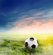 Sporting Equipment Framed Prints - Football soccer ball on green grass Framed Print by Michal Bednarek