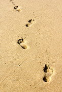 Beauty Mark Photos - Footprints by Christos Koudellaris