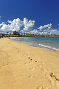 Puerto Rico Prints - Footprints in the Sand Print by George Oze