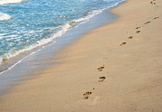Tropical Island Posters - Footprints in the Sand Poster by Juli Scalzi