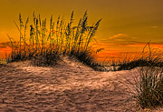 Sea Oats Prints - Footprints in the Sand Print by Marvin Spates