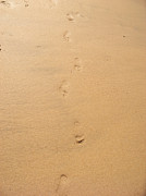 Cornwall Digital Art Prints - Footprints in the sand Print by Pixel  Chimp