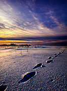 Foot Prints Posters - Footprints in the Snow Poster by Phil Koch