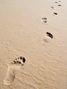Barefeet Prints - Footprints On Sand At A Desert Beach Print by Jose Elias - Sofia Pereira